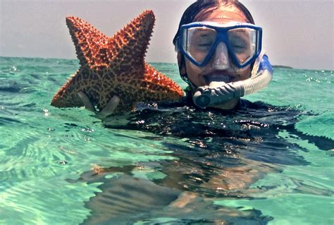 Belize Snorkeling From Shore - Best Snorkel Sites From Beach